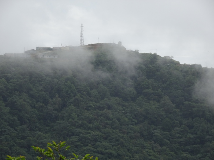 nippon-hill